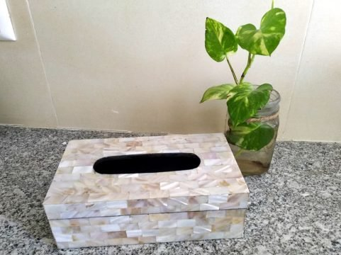 Mother of Pearl Tissue Box Palatial